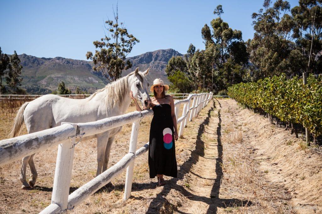 Franschhoek afrique du sud blog voyage lovelivetravel