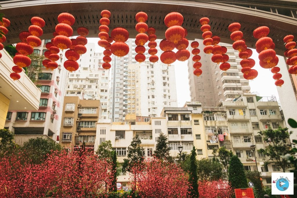 Lee Tung Avenue hong-kong volière blog voyage LoveLiveTravel