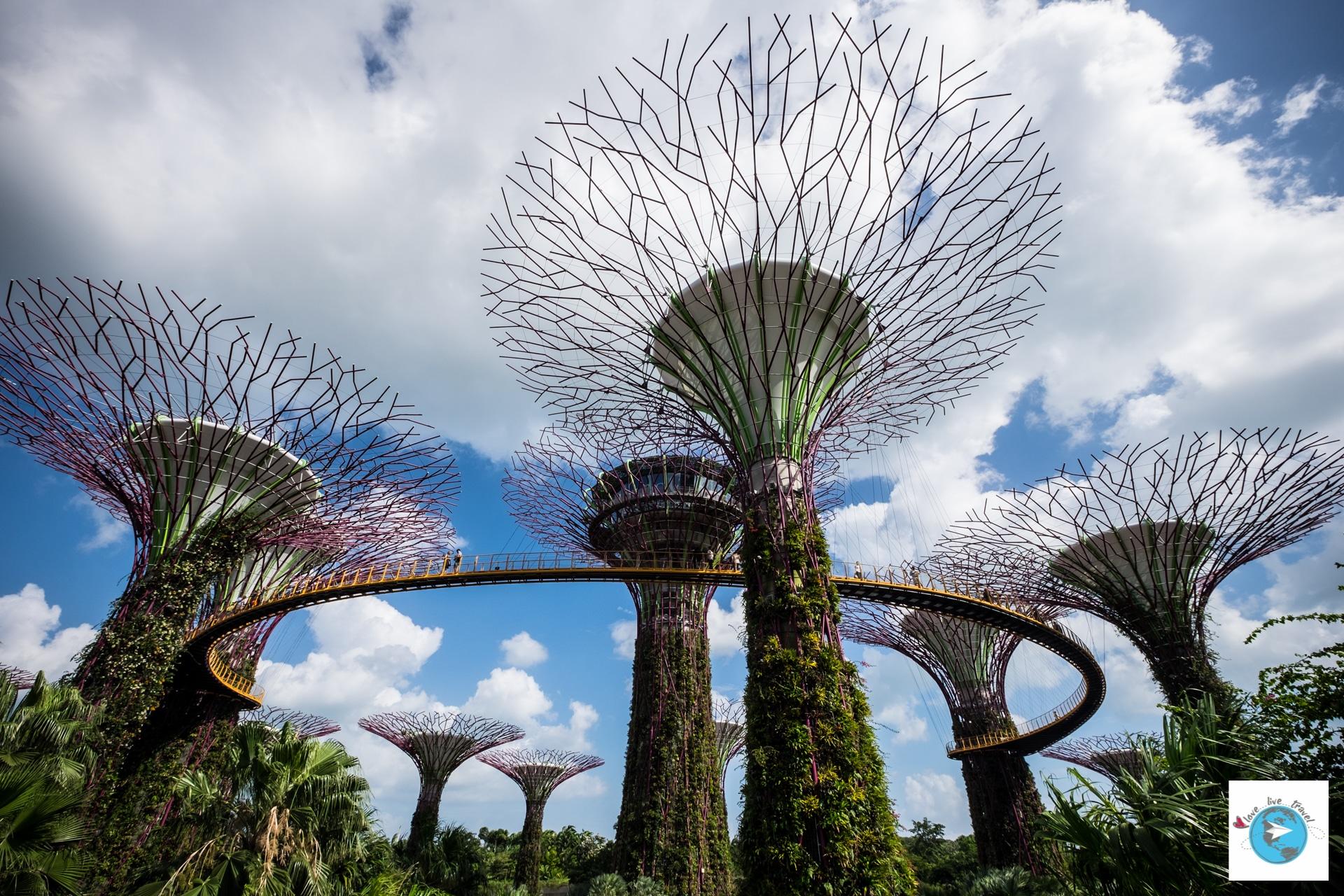 Marina bay singapour for Singapour marina bay sands piscine