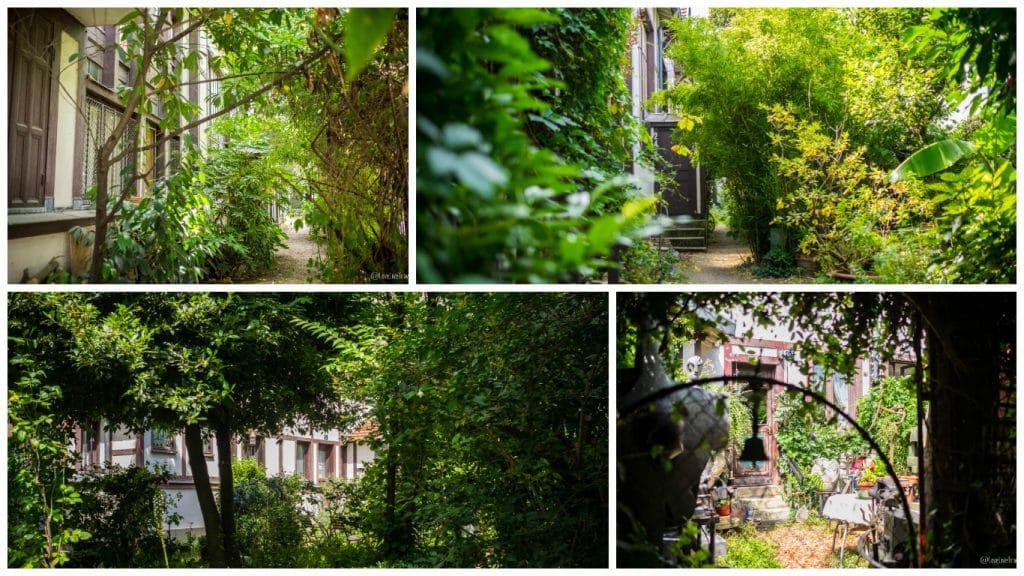 Paris cité fleurie rues insolites secrètes cité figuier blog voyage LoveLiveTravel