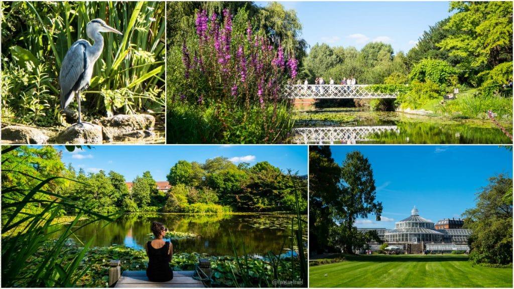 jardin botanique Copenhague Danemark blog voyage lovelivetravel