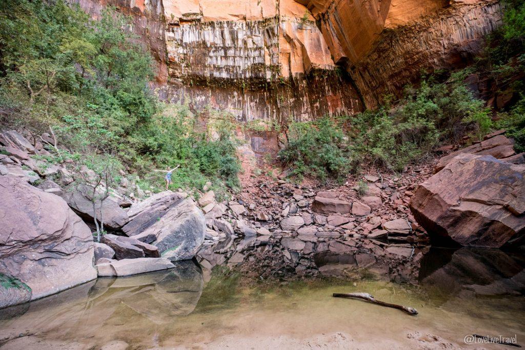 Zion National park emerald pool Utah roadtrip USA blog voyage lovelivetravel