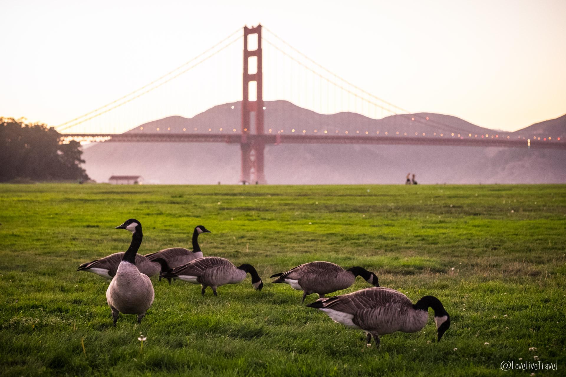 Roadtrip 3 jours à San Francisco
