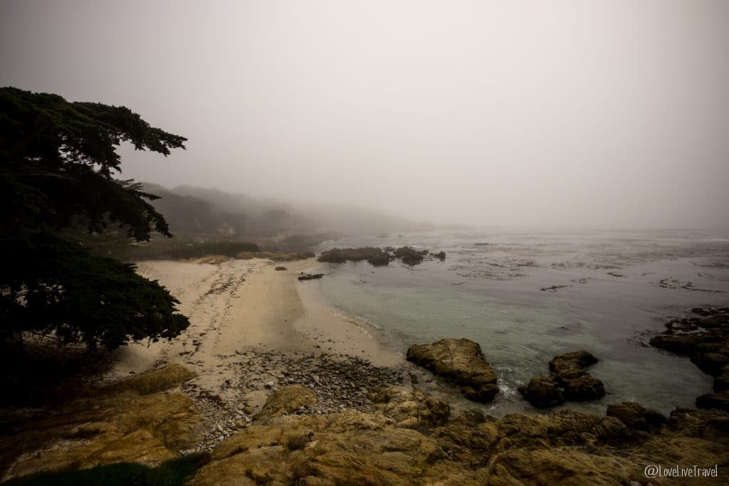 17 mile drive highway 1 road trip usa californie blog voyage lovelivetravel