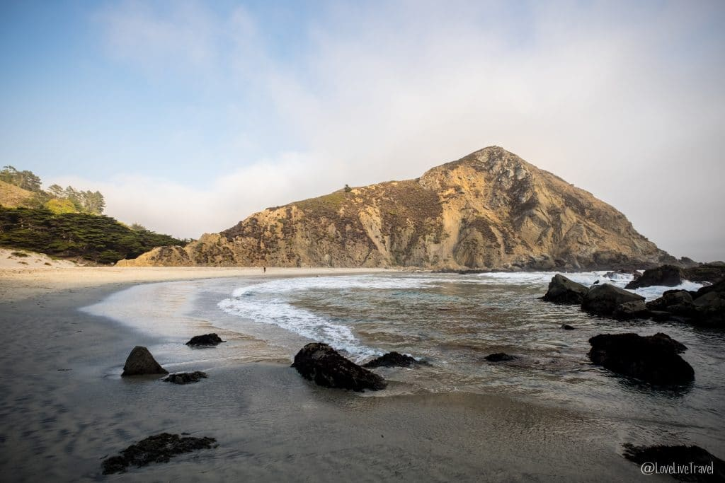 Pfeiffer Big Sur State Park highway 1 road trip usa californie blog voyage lovelivetravel