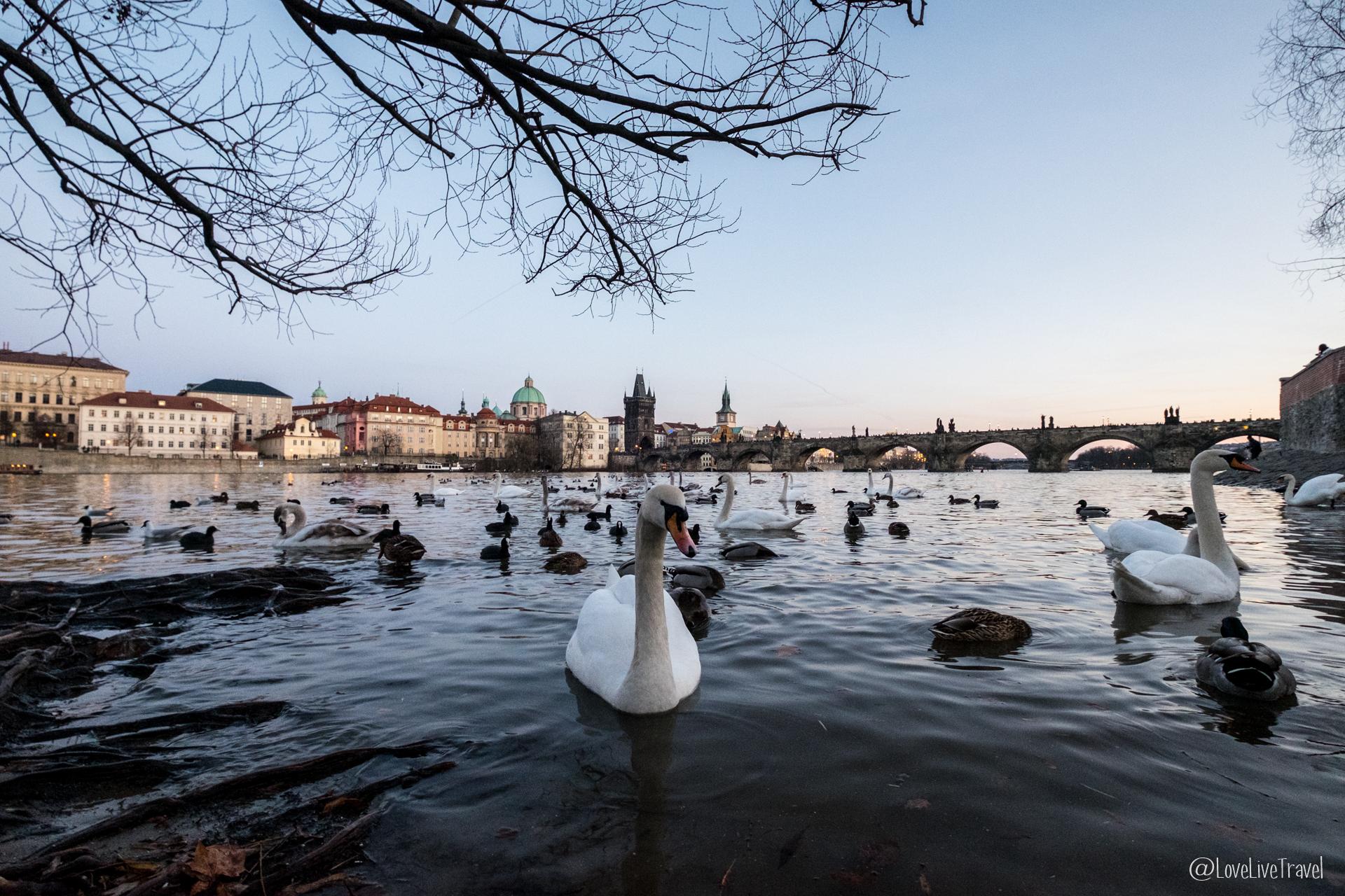 2 jours pour visiter Prague