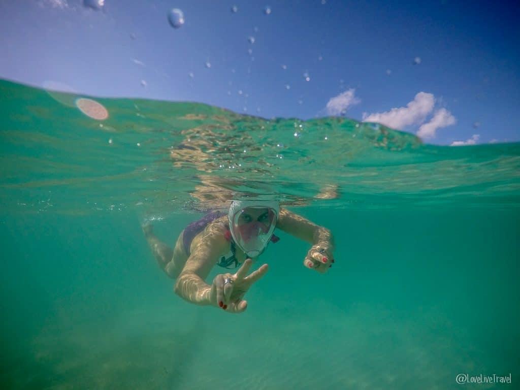 tortue plage d'Akumal tulum mexique blog voyage lovelivetravel