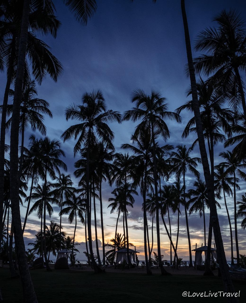 hôtel V samana viva Wyndham las terrenas république Dominicaine blog voyage lovelivetravel