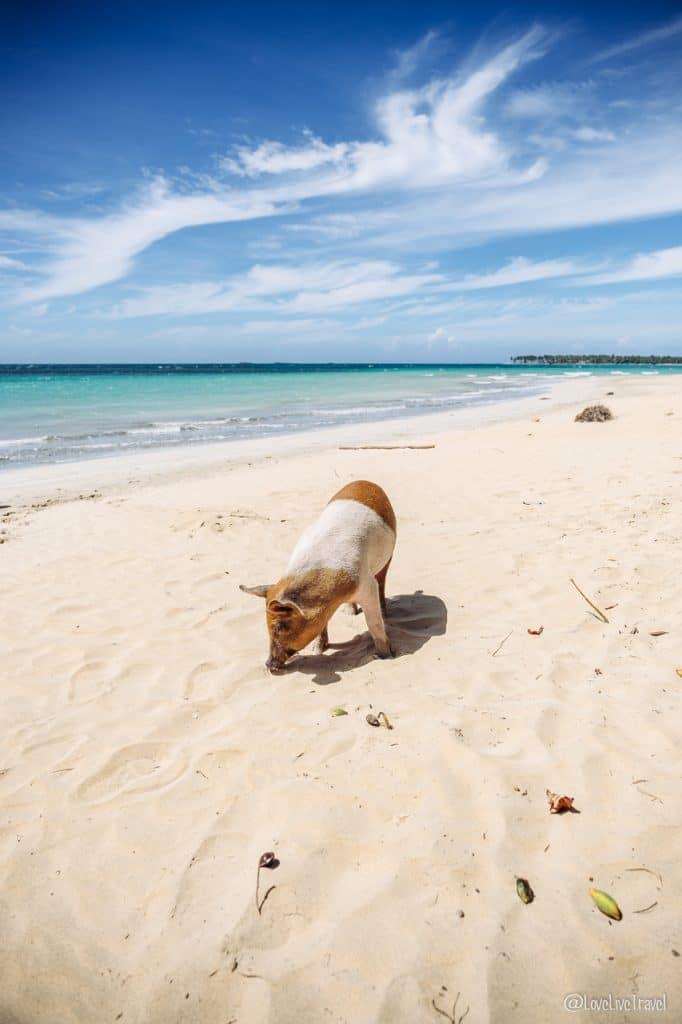 chez valério plage coson république Dominicaine blog voyage lovelivetravel
