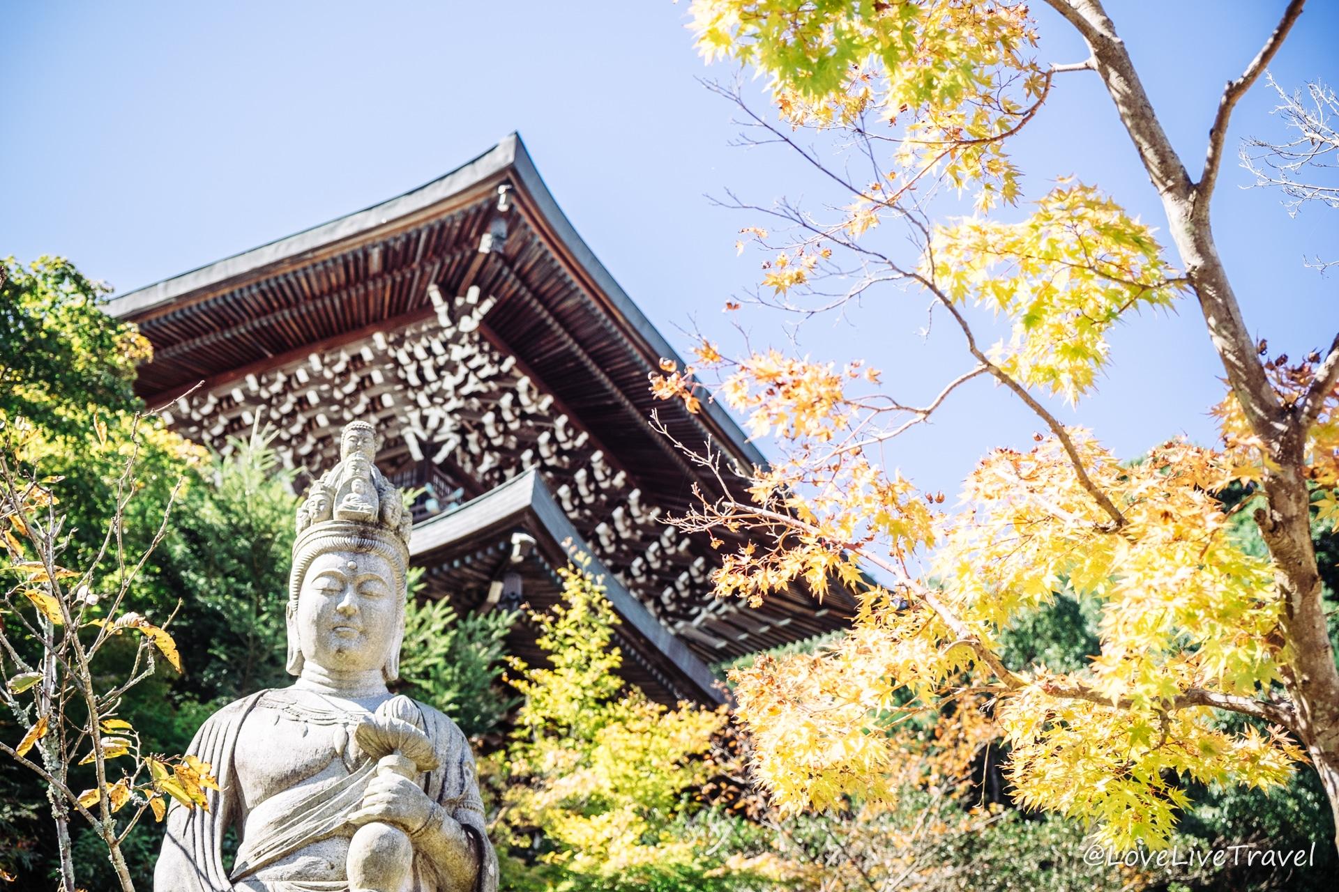 Miyajima Japon Blog Voyage Lovelivetravel