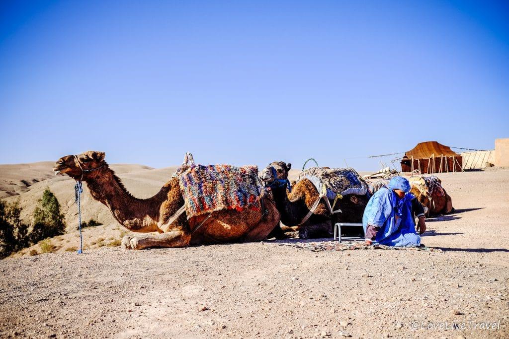 la pause desert agafay Maroc marrakech blog voyage lovelivetravel