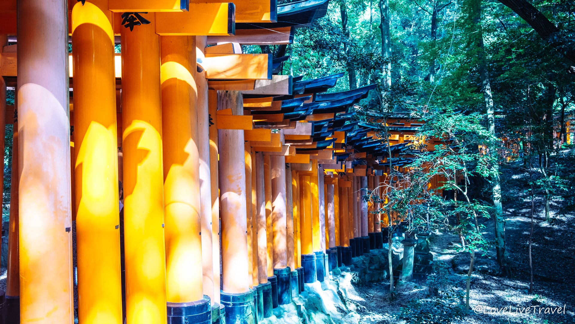 Kyoto en 3 jours