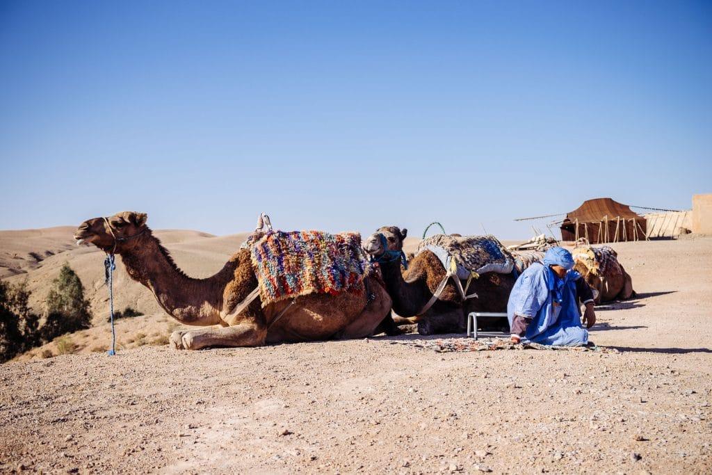 maroc Marrakech, nos 10 adresses incontournables blog voyage lovelivetravel