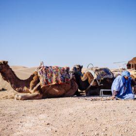 Marrakech, nos 10 adresses incontournables