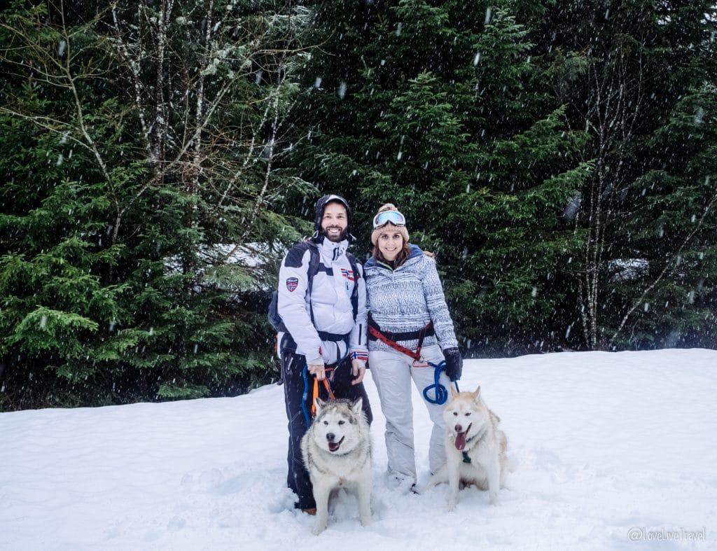 Massif des vosges france ski neige blog voyage lovelivetravel cani-rando
