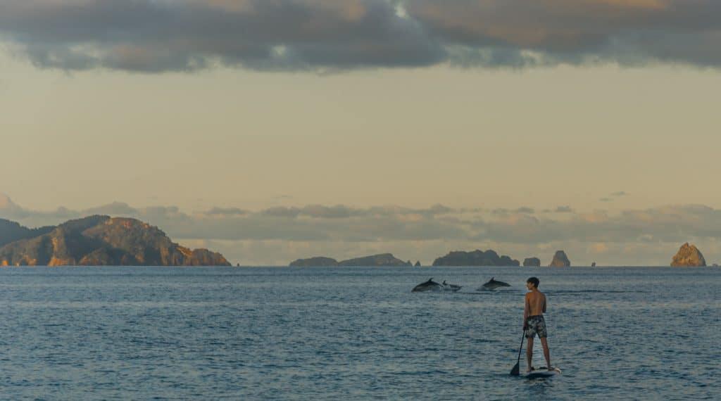 nouvelle Zélande blog voyage lovelivetravel Hahei