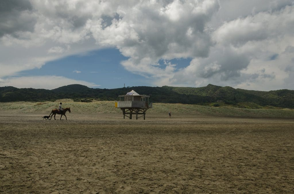 nouvelle Zélande blog voyage lovelivetravel Te Henga