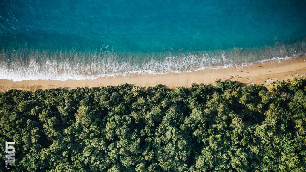 10 choses à voir et à faire à Basse-Terre en Guadeloupe blog voyage et lifestyle lovelivetravel