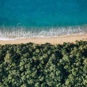 10 choses à voir et à faire à Basse-Terre en Guadeloupe