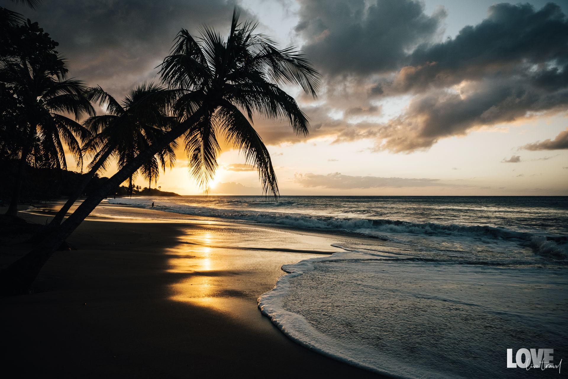 5 choses à voir ou à faire à Pointe-à-Pitre en Guadeloupe