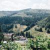 Un Week End détente et gastronomique dans le Bade-Wurtemberg, en Allemagne blog voyage et lifestyle Lovelivetravel