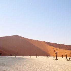 Namibie, 2 semaines de road trip