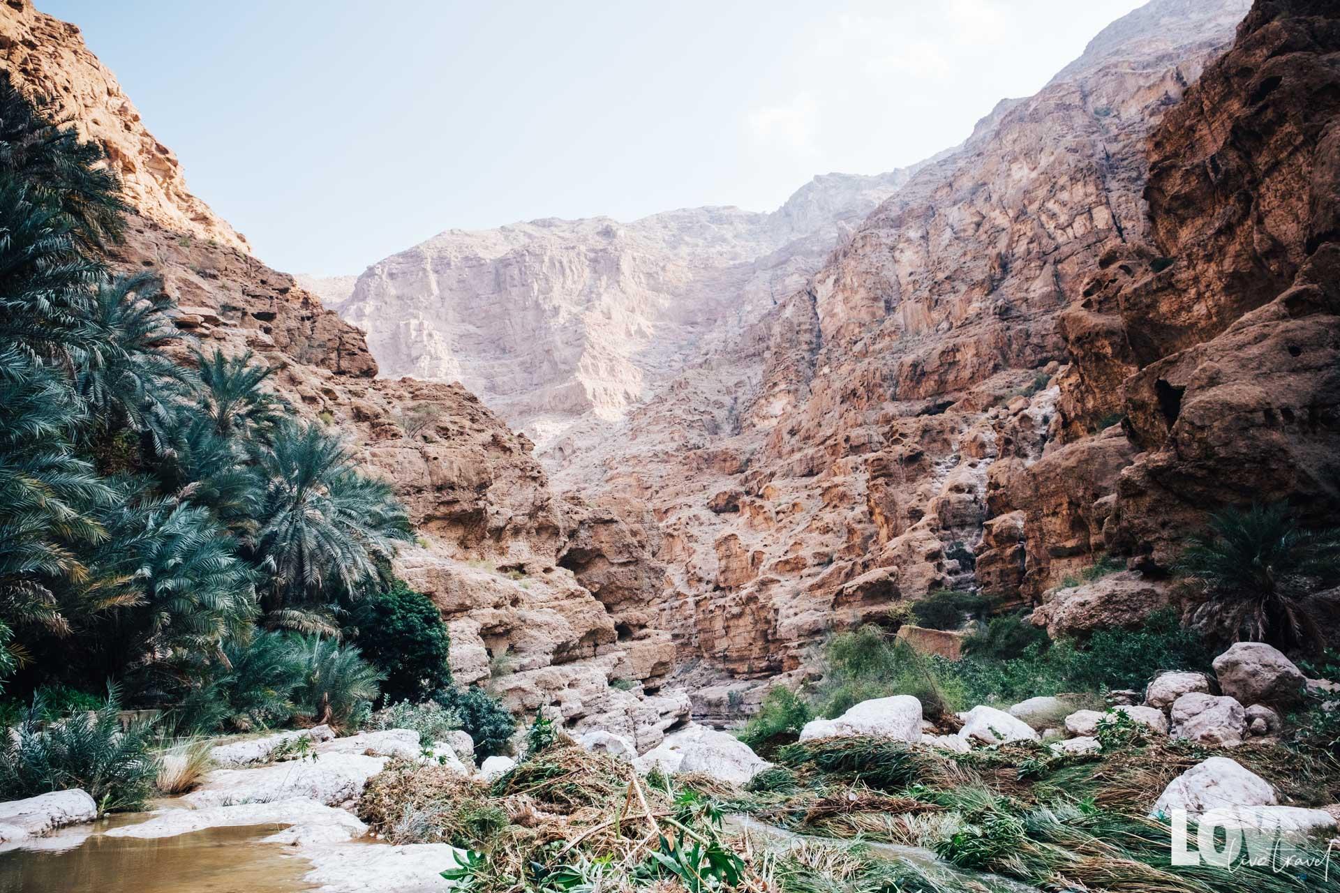 Road trip de 8 jours à Oman