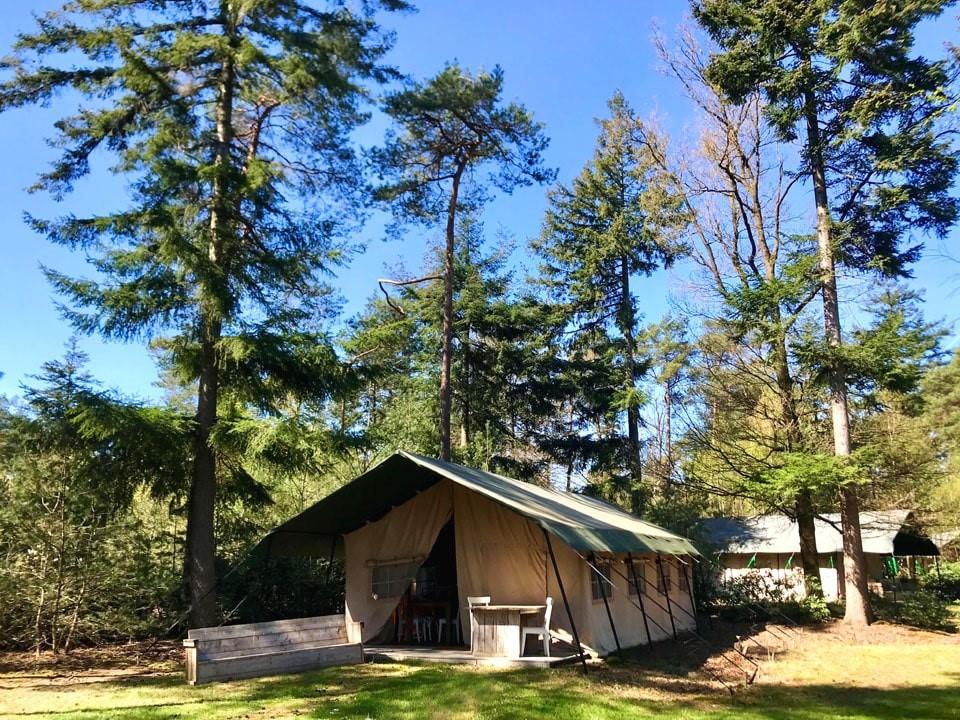 Les hébergements insolites en pleine nature maison nature blog voyage lifestyle lovelivetravel